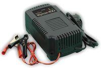 Зарядное устройство Кулон - 100